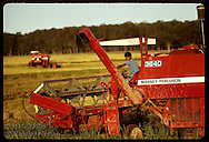 Young combine driver looks over shoulder as he harvests rice in late pm; GB, Rio Grande do Sul. Brazil