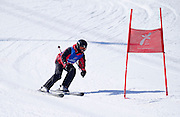 Polish athlete Dawid Kujawowicz while Alpine Intermediate Super Gigant during 2013 Special Olympics World Winter Games PyeongChang at Yongpyong Resort on February 2, 2013...South Korea, PyeongChang, February 2, 2013..Picture also available in RAW (NEF) or TIFF format on special request...For editorial use only. Any commercial or promotional use requires permission...Photo by © Adam Nurkiewicz / Mediasport