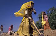 Tribal women building road across Thar Desert, Rajasthan
