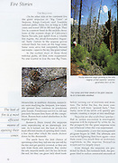 KC Publications, Fire, The Story Behind the Force of Nature, Fire Research, Sequoia National Park, prescribed fire, research, firefighter,