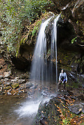 Grotto Falls is a hike of 2.6 miles round trip from the Roaring Fork Motor Nature Trail, on the Tennessee side of Great Smoky Mountains National Park, in southeastern USA. The source of Roaring Fork is located nearly 5,000 feet (1,500 m) up along the northern slopes of Mount Le Conte, where several small springs converge. From its source, Roaring Fork drops 2,500 feet (760 m) over just two miles (3 km), spilling over Grotto Falls. The mouth of the Roaring Fork empties into the West Prong of the Little Pigeon River in Gatlinburg, TN. The Roaring Fork valley is underlain by Precambrian Class II sandstone of the Ocoee Supergroup, a rock formation formed from ancient ocean sediments nearly a billion years ago, as in most of the Smokies.