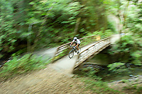 Man mountain biking through lush forest in the Santa Cruz mountains, CA.