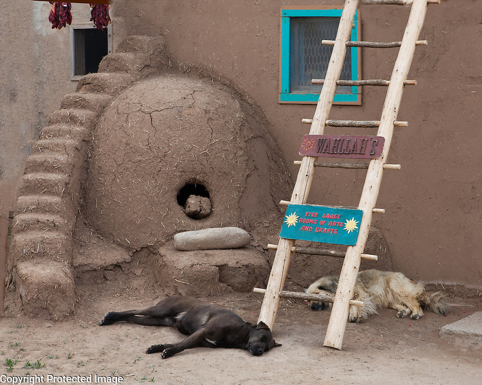 Mud oven and wall with ladder, Taos, New Mexico