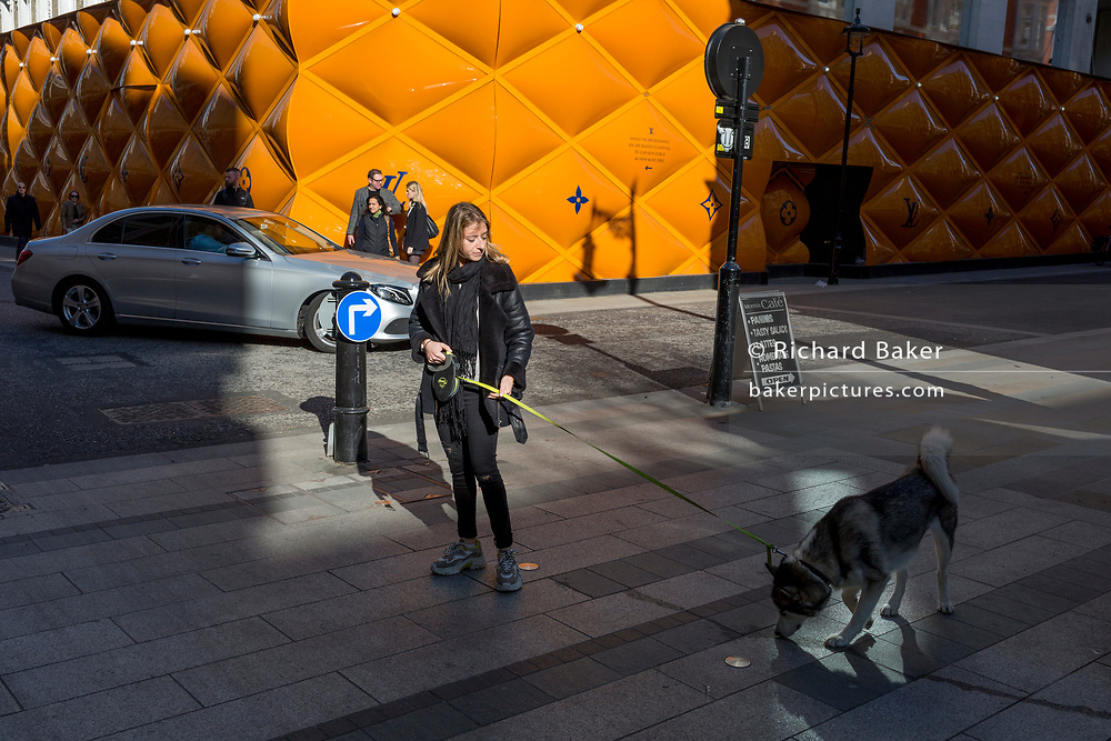 A woman pauses to allow her dog to sniff the ground opposite the temporary renovation hoarding of luxury brand Louis Vuitton in New Bond Street, on 25th February 2019, in London, England.