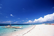 outrigger Fishing boats line the picturesque beach of Malapascua Island, off Cebu in the central Philippines ( Visayan Sea, Western Pacific Ocean )