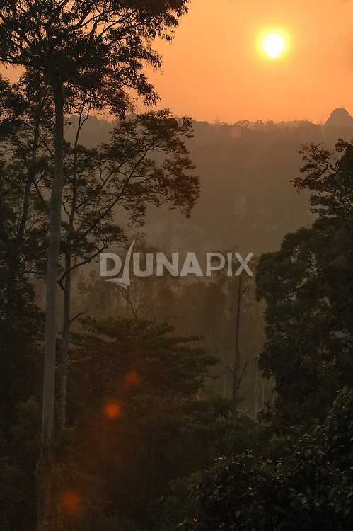 Dark and moody view of the sun sinking over a patch of rainforest near Lake Tebo, Sangkulirang, East Kalimantan