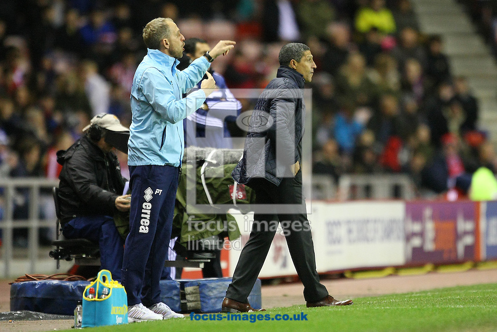 Picture by Paul Chesterton/Focus Images Ltd +44 7904 640267<br /> 21/12/2013<br /> Paul Trollope and Norwich Manager Chris Hughton during the Barclays Premier League match at the Stadium Of Light, Sunderland.