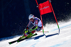 WALSH Thomas C, LW4, USA, Giant Slalom at the WPAS_2019 Alpine Skiing World Cup, La Molina, Spain