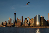 New york Downtown Manhattan skyline  view from the sea   /  dowtown Manhattan vue depuis la mer