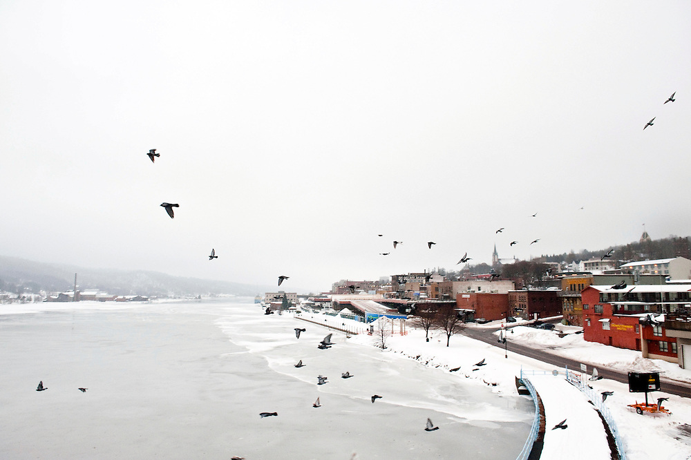 HOUGHTON, MI -DEC. 13, 2014: Birds fly out from beneath the bridge that connects Houghton, MI to Hancock, MI during sunrise Saturday, Dec. 13, 2014. Lauren Justice for The New York Times