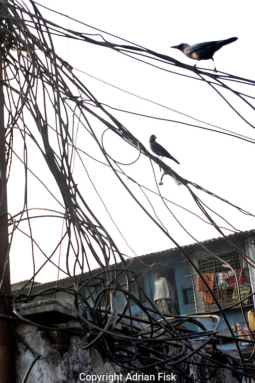 A man stands outside his small home. A chaotic system of tumbling wires carry electricity to slum residents, an estimated 70% of electricity used in Dharavi is stolen from the main power lines.