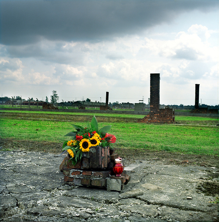 The remnants of the barracks in the Special Roma Camp in Auschwitz - Birkenau. As the Nazis left they burned down the barracks leaving only the chimneys as evidence.