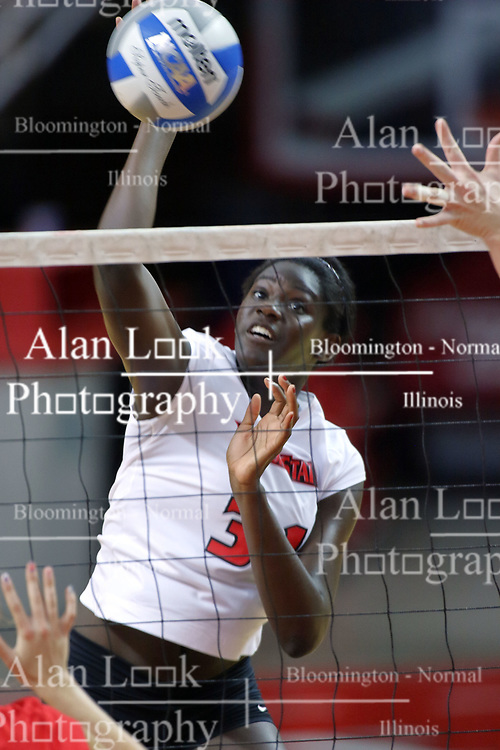 16 AUG 2008: Hailey Kelley strikes an attack during the annual Red-White intra-squad scrimmage at Redbird Arena on the campus of Illinois State University in Normal Illinois.