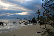 Driftwood Beach, Jekyll Island, on a stormy, cloudy day.