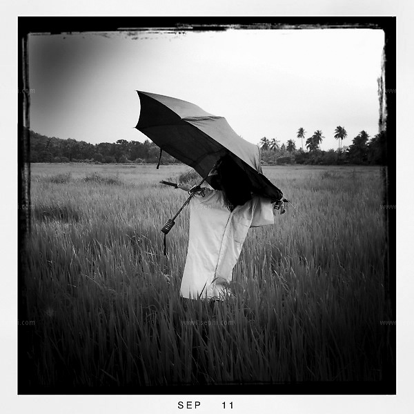 Monsoon season in Goa. iPhone image