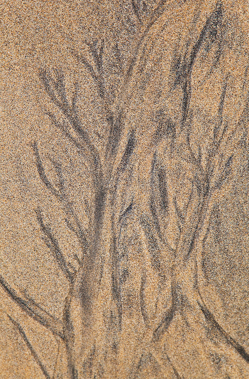 Diseños de arena (Sand Patterns). Playa Dail Beag Beach. Lewis Island. Outer Hebrides. Scotland, UK