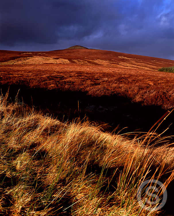 Photographer: Chris Hill, Knocklayd Mountain, Ballycastle, County Antrim