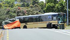 Auckland-Van driver dead after collision with bus, Waipa Road, Birkenhead