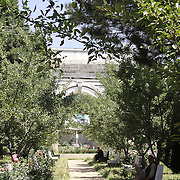 July 2016<br /> The trees planted to embellish the site have grown so vigorously that their foliage overwhelms the Arch. The former dramatic impact that the Arch once had on visitors is thereby greatly diminished. In fact, it is easy to drive right by without noticing it at all. <br /> Photo: Hashmatullah Ahmadi.