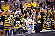 Pittsburgh Steelers fans wave terrible towels as they cheer for the team during the Pittsburgh Steelers NFL AFC Wild Card playoff football game against the Cincinnati Bengals on Saturday, Jan. 9, 2016 in Cincinnati. The Steelers won the game 18-16. (©Paul Anthony Spinelli)