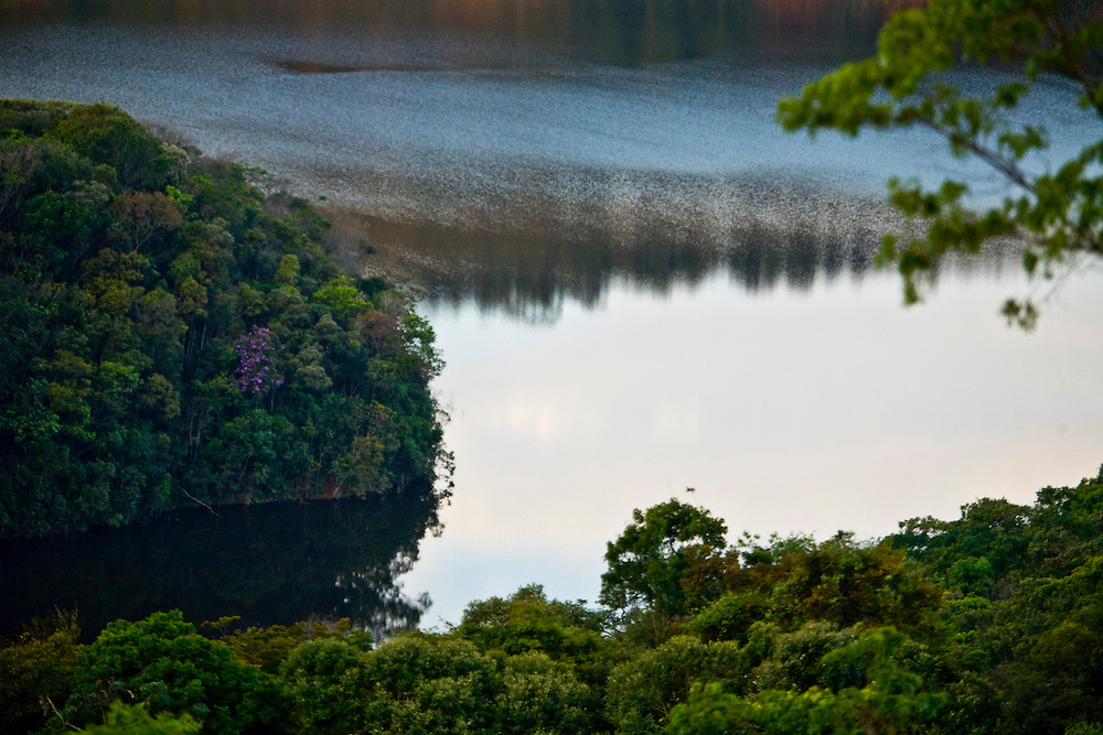 Nova Lima_MG, Brasil...Estacao Ecologica de Fechos...The Ecological Station Fechos...Foto: JOAO MARCOS ROSA /  NITRO