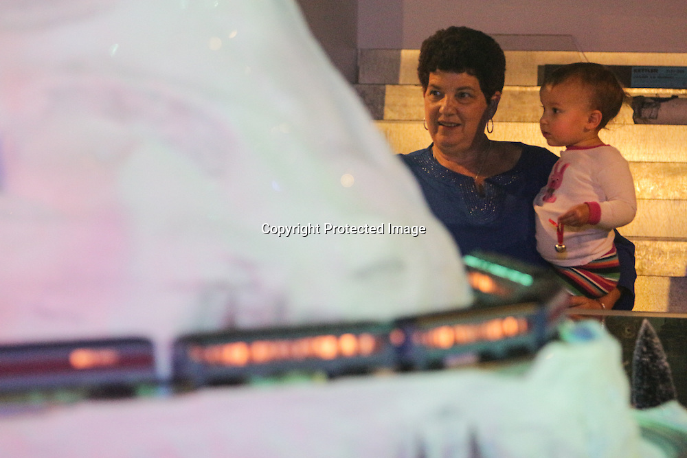Shelley Bullard and her granddaughter Syndey Clark, 1, watch model trains during The Cape Fear Model Railroad Society Holiday Train Expo 2014 in Wilmington, N.C. The event will be held each weekend until December 28. (Jason A. Frizzelle)
