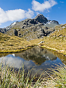 Mount Xenicus, on the Routeburn Track, Mount Aspiring National Park, South Island, New Zealand. In 1990, UNESCO honored Te Wahipounamu - South West New Zealand as a World Heritage Area.