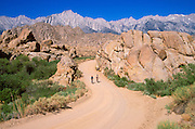 Mountain bikers on dirt road in the Alabama Hills under Mount Whitney (highest point in continental US), Owens Valley, Eastern Sierra Nevada Mountains, California