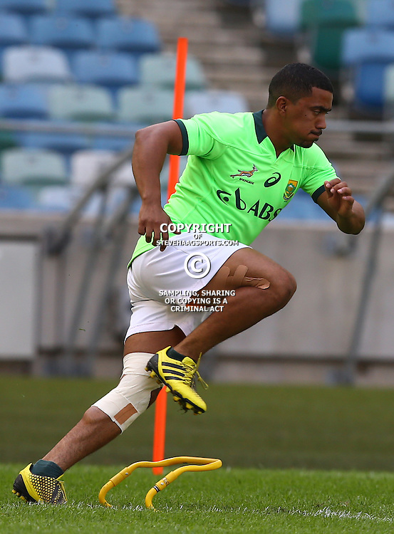 DURBAN, SOUTH AFRICA - AUGUST 21: Rudy Paige during the South African national rugby team training session at Moses Mabhida Stadium on August 21, 2015 in Durban, South Africa. (Photo by Steve Haag/Gallo Images)