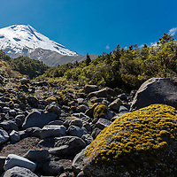 Mount Teranaki, New Zealand with stream bed crossing hiking trail
