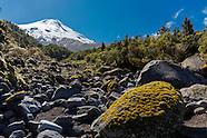 New Zeland Landscapes