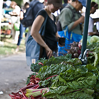 The year-round, weekly organic farmers' market at Dufferin Grove park, Toronto, Canada