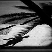 WALKER HAVANA / CAMINANTE HABANA.<br /> Photography by Aaron Sosa.<br /> The Havana - Cuba 2007.<br /> (Copyright © Aaron Sosa)