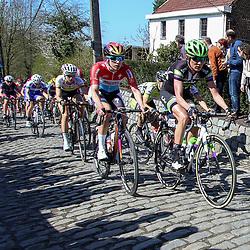 03-04-2016: Wielrennen: Ronde van Vlaanderen vrouwen: Oudenaarde  <br />OUDENAARDE (BEL) cycling  The sixth race in the UCI Womensworldtour is the ronde van Vlaanderen. A race over the famous Flemish climbs. Molenberg Carlee Taylor, Cristine Majerus