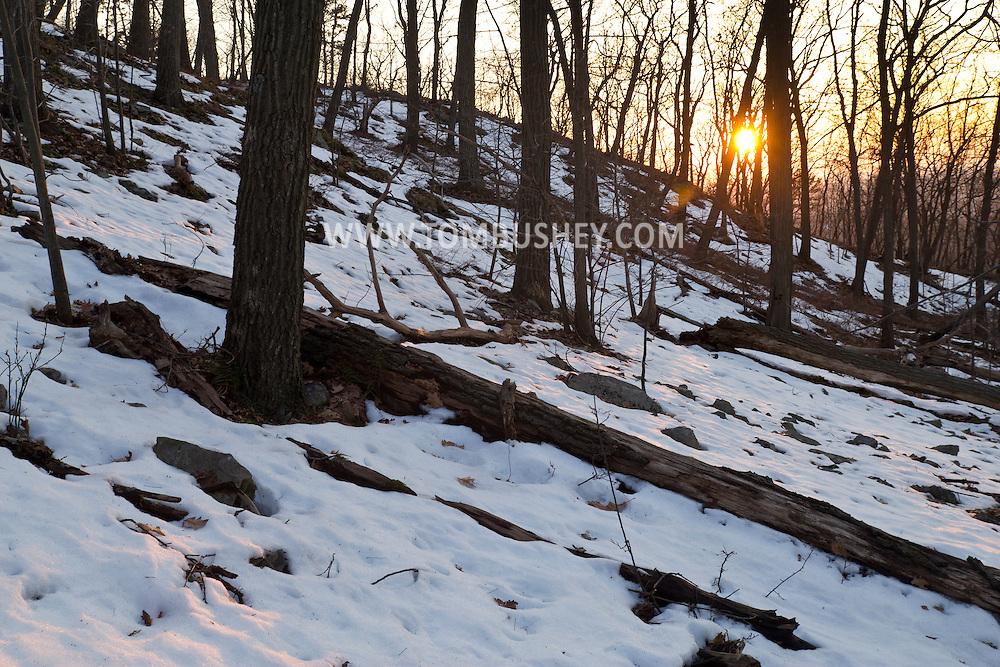 Salisbury Mills, New York - The setting sun illuminates the forest on Schunnemunk Mountain on March 22, 2014.