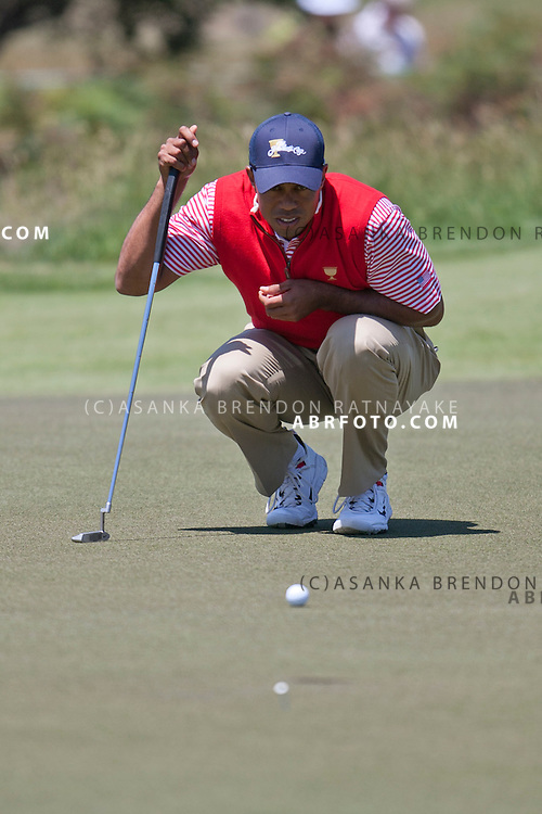 16 November 2011 : Tiger Woods reads the green during the 2nd & final day of practice at the Presidents Cup at the Royal Melbourne Golf Club in Melbourne, Australia. .