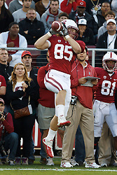 November 6, 2010; Stanford, CA, USA;  Stanford Cardinal tight end Ryan Hewitt (85) catches a pass against the Arizona Wildcats during the first quarter at Stanford Stadium.