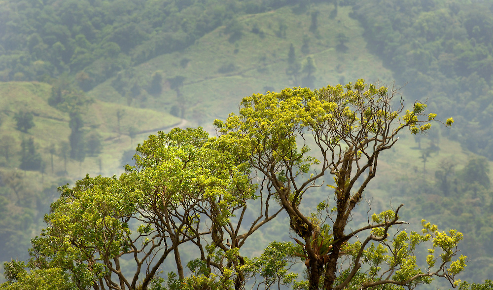 Costa Rica. Photo by Glenn Fawcett.
