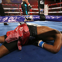 Alphonso Black lies on the canvas after being knocked out by Daniel Rosario during a Telemundo Boxeo boxing match at the A La Carte Pavilion on Friday,  March 13, 2015 in Tampa, Florida. Rosario won the bout by TKO.  (AP Photo/Alex Menendez)