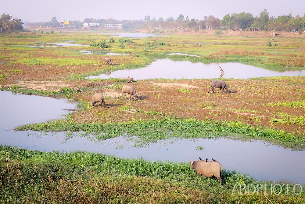 ubon ratchathani isaan thailand river lake countryside