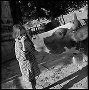 Berglandwirtschaft unter einfachsten Bedingungen in den Freiburger Voralpen. Region Plasselb - La Berra. Vivre simple: agriculture de montagne dans les préalpes fribourgeoises. © Romano P. Riedo