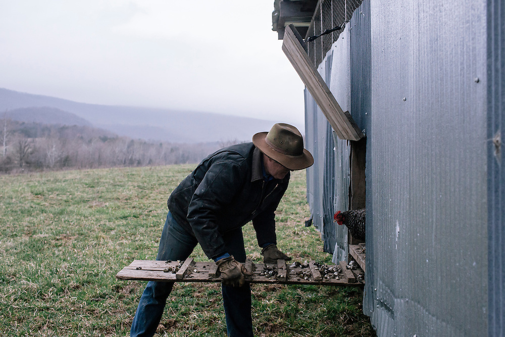 SWOOPE, VA - MARCH 26 Pasture-based farmer Joel Salatin opens the egg mobile for nearly 750 chickens to graze on an open field for the day at Polyface Farms in Swoope, Va. on March 26, 2015. Salatin is one of the heroes of the sustainable-food movement, and he appeals to both left- and right-wing audiences.  (Photo by Greg Kahn/GRAIN for The Washington Post)
