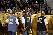 03/10/12 - COURNON - PUY DE DOME - FRANCE - 21e Sommet de l Elevage a la Grande Halle d Auvergne - Photo Jerome CHABANNE