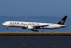 Boeing 777-337(ER) (VT-ALJ) operated by Air India with the Star Alliance livery landing at San Francisco International Airport (KSFO), San Francisco, California, United States of America