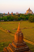 Horse drawn carriage with Shwesandaw Pagoda in background, Bagan, Myanmar (Burma)
