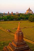 Horse drawn carriage with Shwesandaw Pagoda in background, Bagan, Myanmar (Burma)