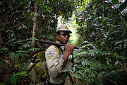 A ranger on patrol in the forest. The forest rangers are employed by the Ministry of Environment but sponsored by Flora and Fauna International who pays them 75% of their salary and provides training and accommodation. They undertake regular patrols in to the Samkos Wildlife Sancturary which is part of the Cardamom Mountains Nature Reserve looking for illegal activites such as logging, poaching, land encroachment and the production of the illegal substance sassafras oil. The Cardamom Mountains and surrounding forests is the largest and most pristine area of intact forest in SE Asia. Covering an area of 2.5 million acres it became one of the last strong holds of a retreating Khmer Rouge. Their presence helped preserve the forest as no-one dared to venture inside. But with the Khmer Rouge gone, it faces new dangers from poachers, loggers and illegal drug factories. In charge of protecting this vast forest are a handful of rangers who's job it is to track down and arrest those who are helping to destroy this delicate habitat.