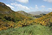 Lyttelton, New Zealand. Mount Pleasant trail