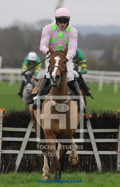 Paul Townend on Faugheen wins the Unibet Morgiana Hurdle during the Winter Festival at Punchestown Racecourse, Punchestown<br /> <br /> Picture by Lorraine O'Sullivan/Focus Images Ltd +353 872341584<br /> <br /> 19/11/2017