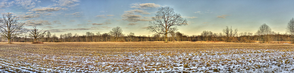 Panoramic Photo of the Great Swamp National Wildlife Refuge in winter